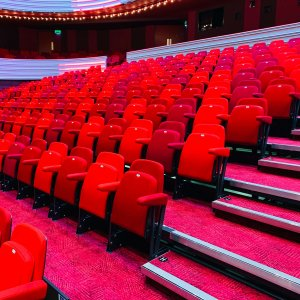 comfortable red cinema seating with matching carpet